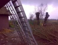 Knotten wilg als onderdeel van tuinonderhoud in Friesland